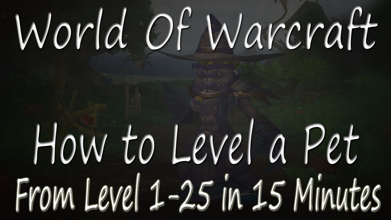 pet leveling guide to 25